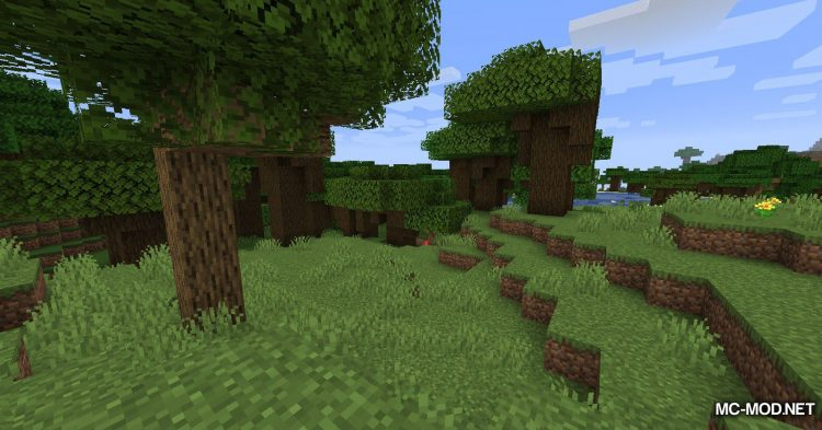 Ring of Teleport mod for Minecraft (2)