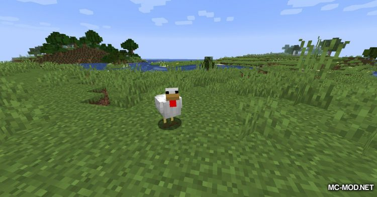 Chicken Drop Feathers (2)