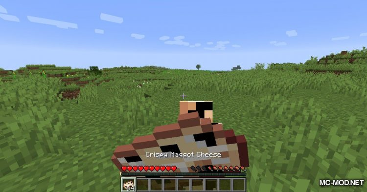 Maggot Cheese Mod mod for Minecraft (10)
