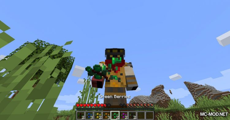 More Berries mod for Minecraft (12)