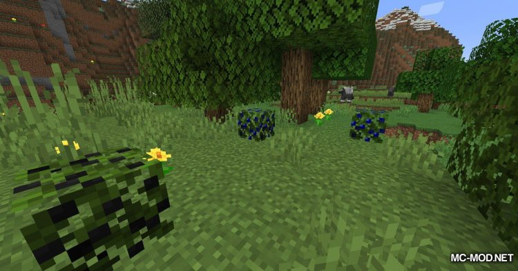 More Berries mod for Minecraft (4)