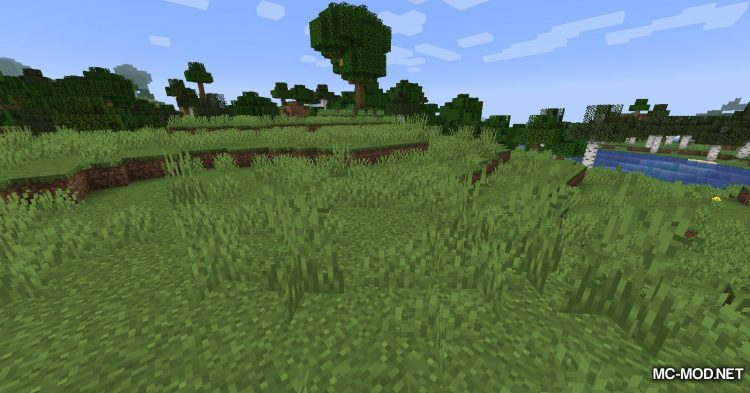Tea and Biscuits mod for Minecraft (2)
