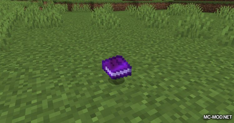 XP Tome mod for Minecraft (6)