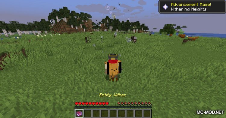 Catch Everything In Book mod for Minecraft (13)