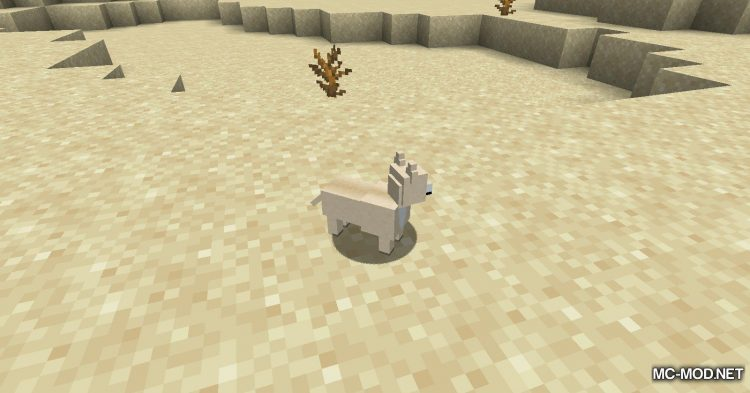 More Dogs mod for Minecraft (3)