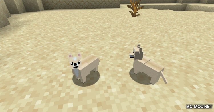 More Dogs mod for Minecraft (4)