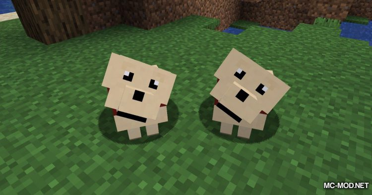 More Dogs mod for Minecraft (8)