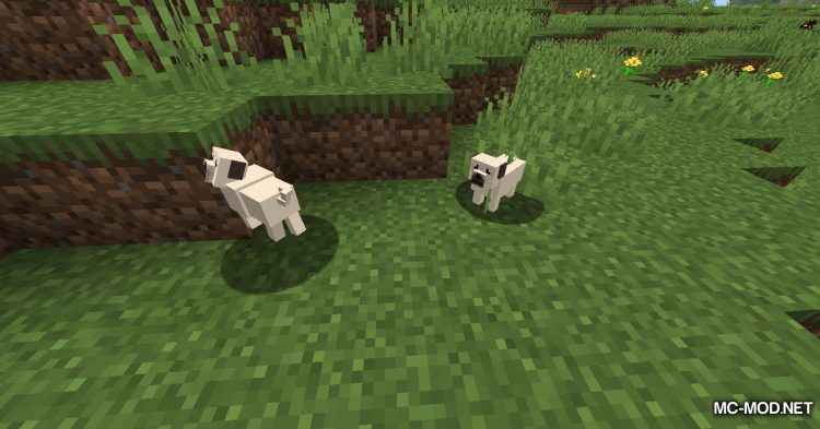 More Dogs mod for Minecraft (9)