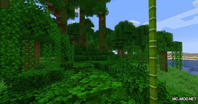 Obfuscate mod for Minecraft (11)