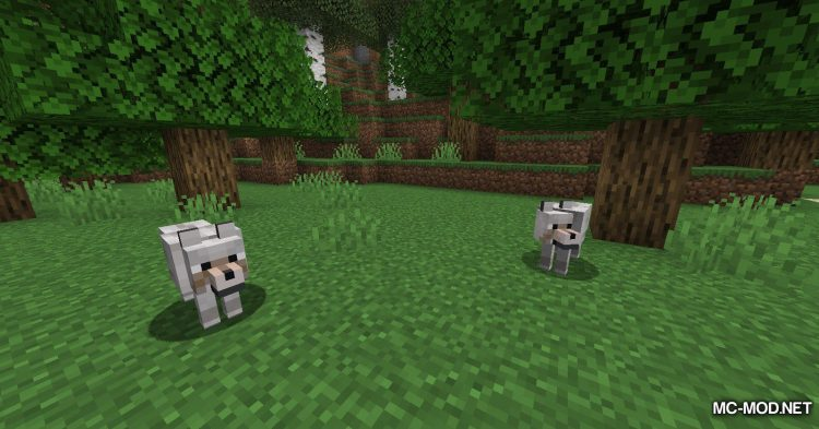 Obfuscate mod for Minecraft (3)