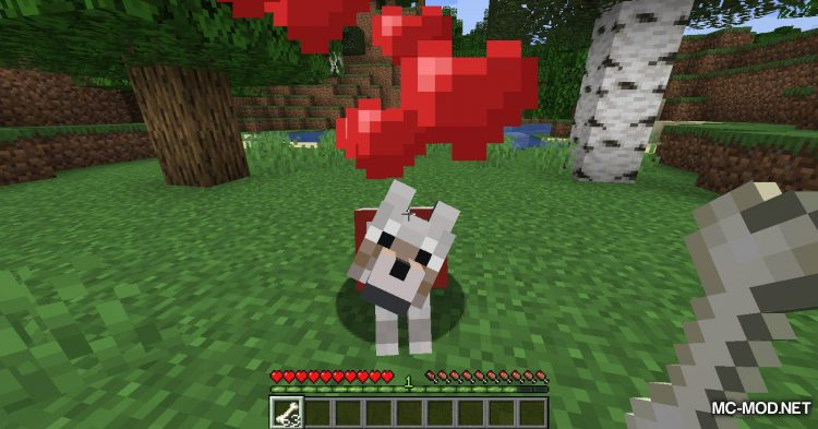 Obfuscate mod for Minecraft (5)
