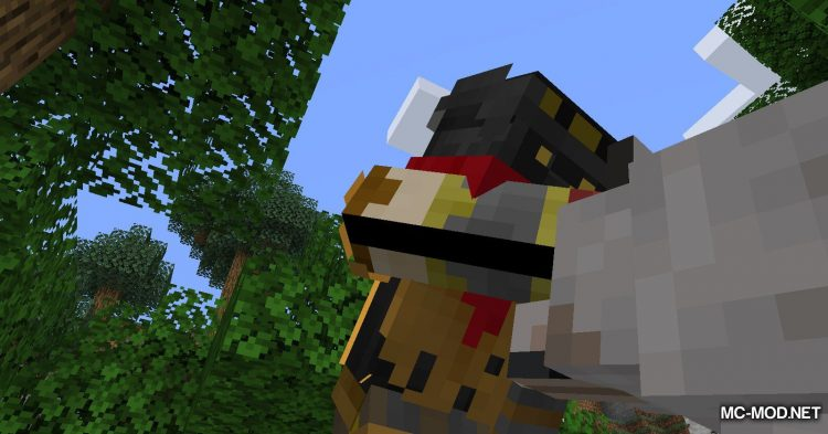 Obfuscate mod for Minecraft (8)