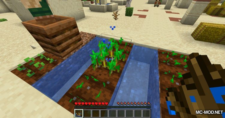 Watercan mod for Minecraft (4)