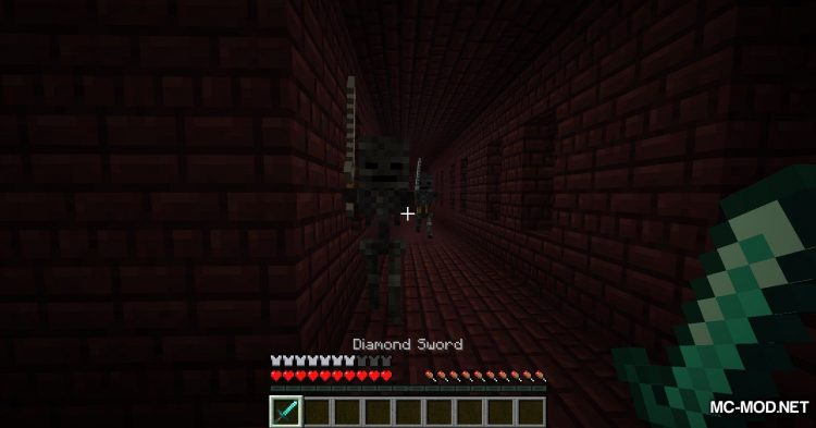 Better Wither Skeletons mod for Minecraft (4)