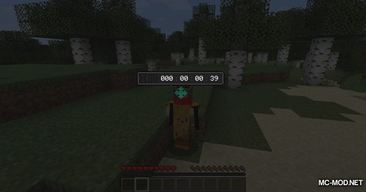 Countdown mod for Minecraft (10)
