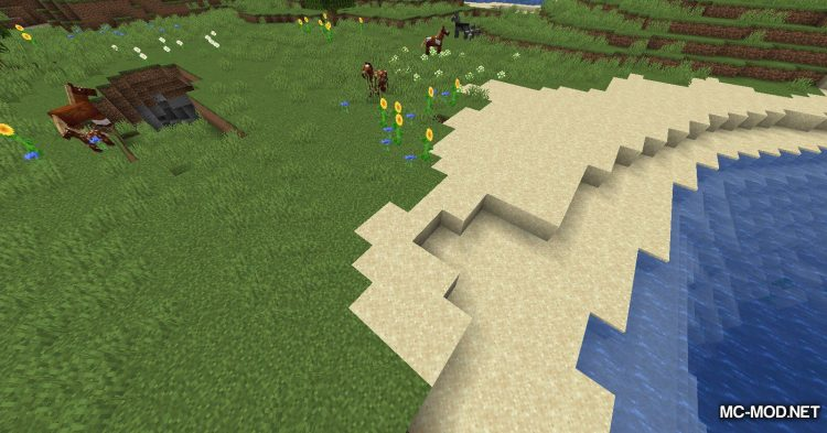 Biome Border Viewer mod for Minecraft (2)