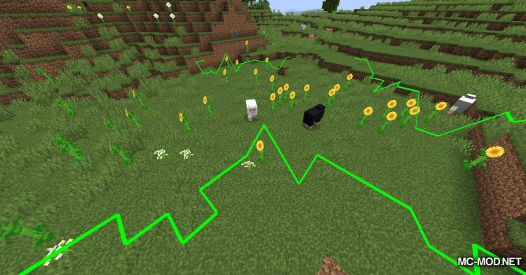 Biome Border Viewer mod for Minecraft (4)
