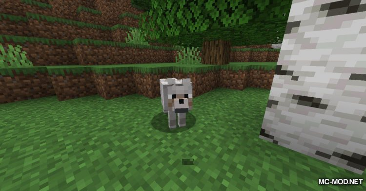 Respawnable Pets mod for Minecraft (2)