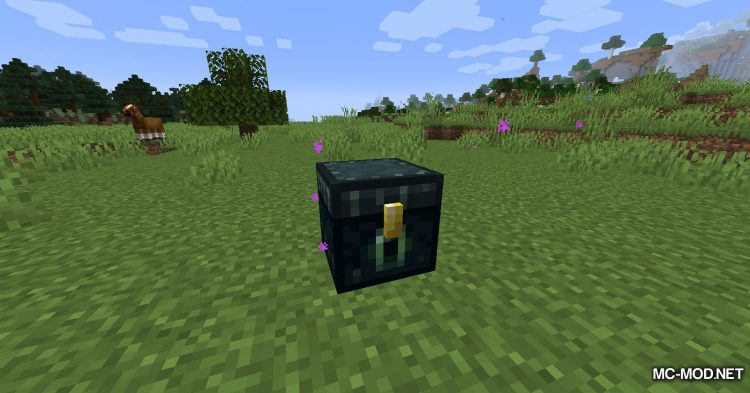 Ring of the Enderchest mod for Minecraft (3)