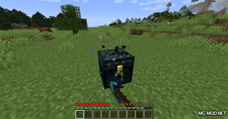 Ring of the Enderchest mod for Minecraft (4)