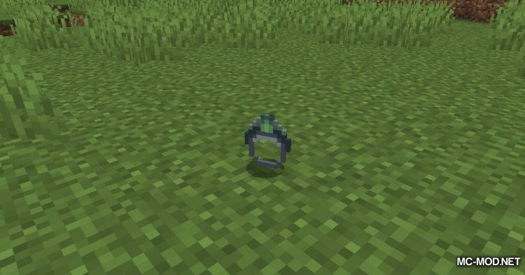 Ring of the Enderchest mod for Minecraft (7)