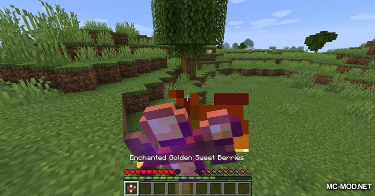 Enhanced Vanilla mod for Minecraft (16)