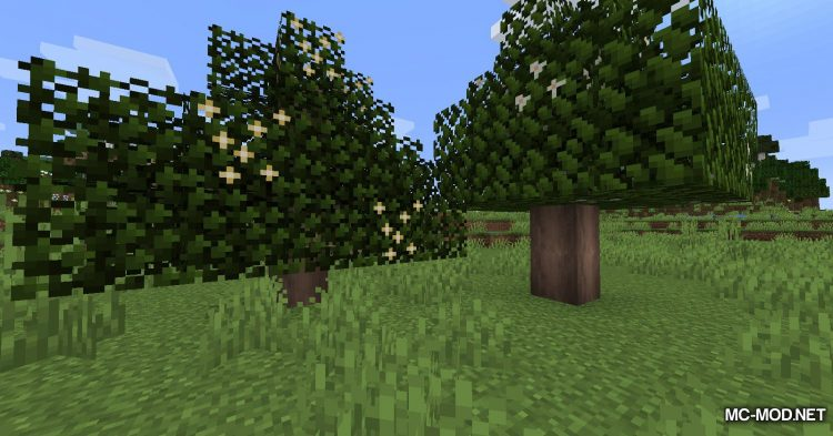 Fruit Trees mod for Minecraft (1)