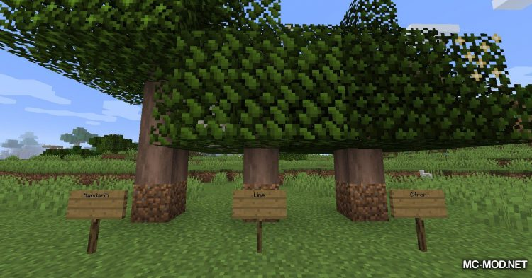 Fruit Trees mod for Minecraft (4)