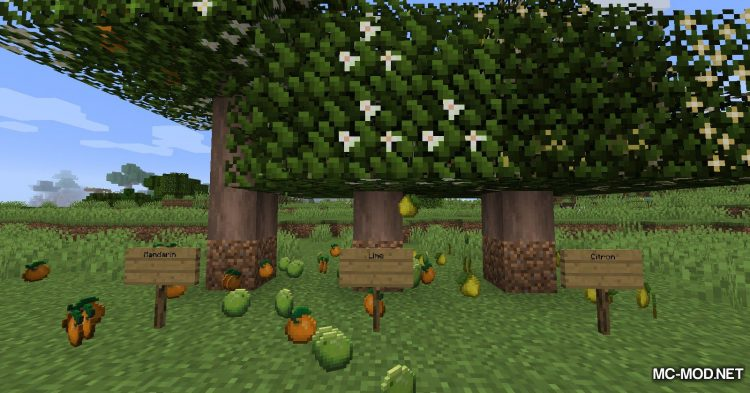 Fruit Trees mod for Minecraft (5)