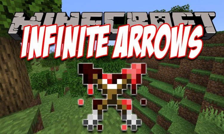 Infinity Works With All Arrows mod for Minecraft logo