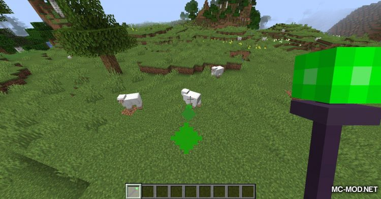 Misc Additions mod for Minecraft (7)