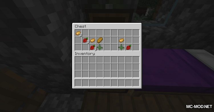Simply Strawberries mod for Minecraft (3)
