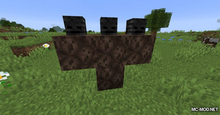 Always a Wither Skull mod for Minecraft (9)