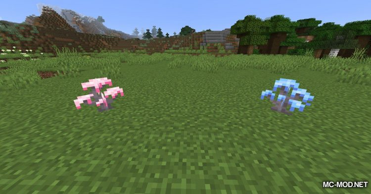 Bloomful mod for Minecraft (7)