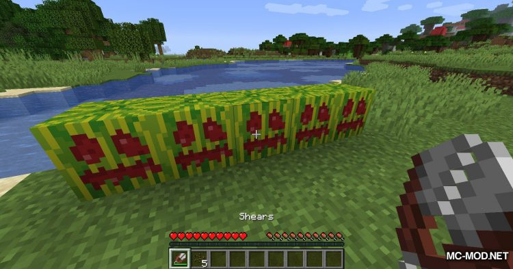 Carved Melon mod for Minecraft (5)