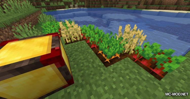 Chunk Activator mod for Minecraft (10)