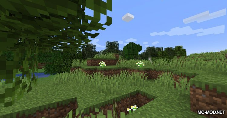 Chunk Activator mod for Minecraft (2)