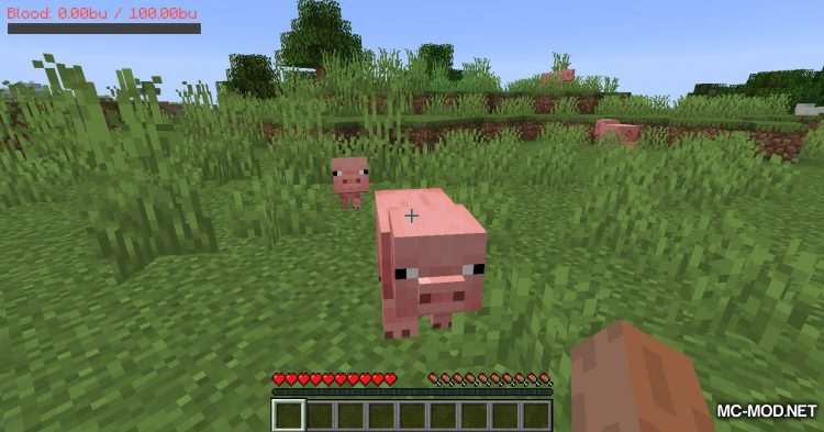 PlayerBlood mod for Minecraft (1)
