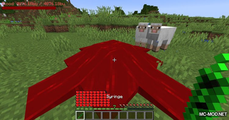 PlayerBlood mod for Minecraft (10)