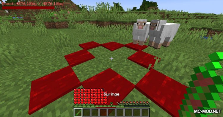 PlayerBlood mod for Minecraft (11)