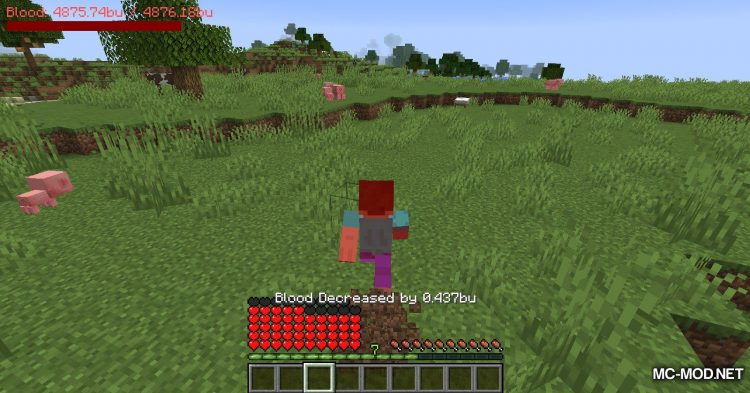 PlayerBlood mod for Minecraft (13)