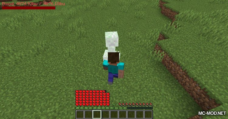 PlayerBlood mod for Minecraft (14)