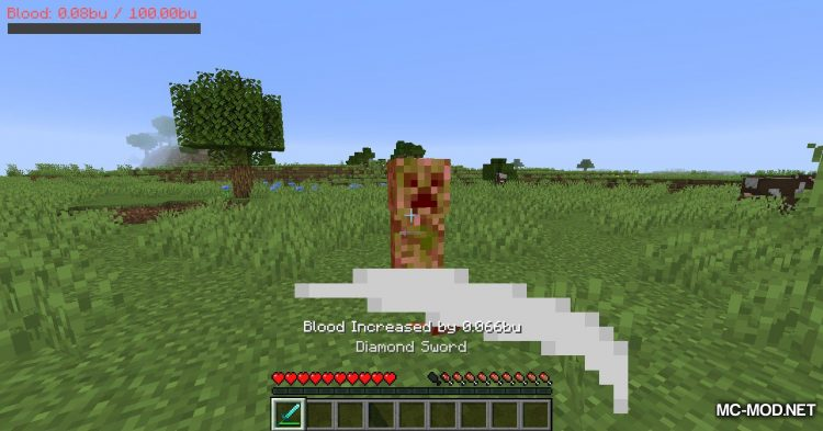 PlayerBlood mod for Minecraft (3)
