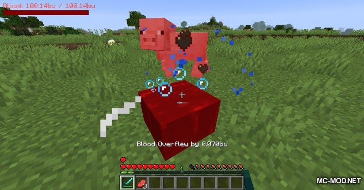 PlayerBlood mod for Minecraft (6)