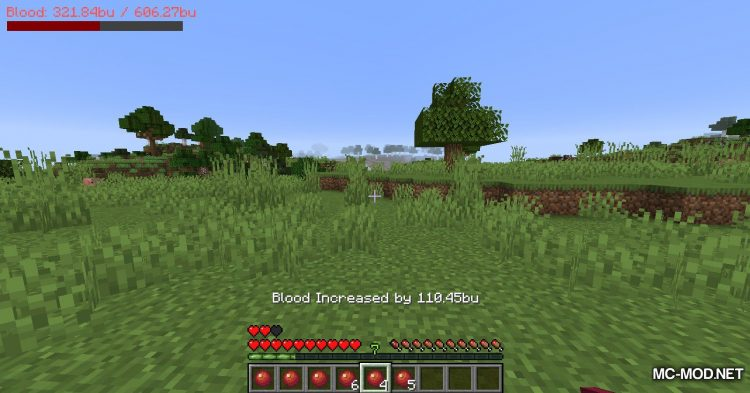 PlayerBlood mod for Minecraft (8)