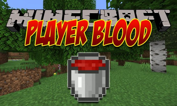 PlayerBlood mod for Minecraft logo