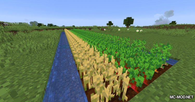 Replanting Crops mod for Minecraft (8)