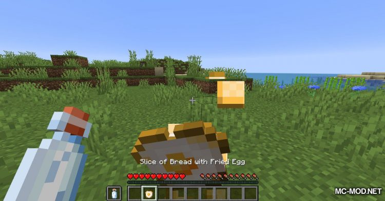 VanillaBreakfast mod for Minecraft (8)