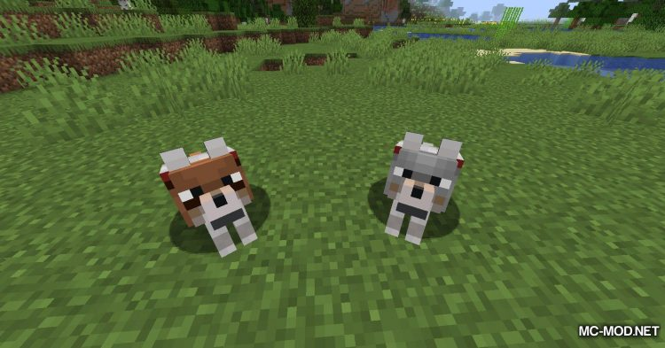 Wolves With Armor mod for Minecraft (5)