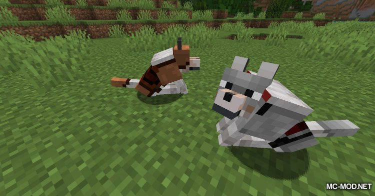 Wolves With Armor mod for Minecraft (6)